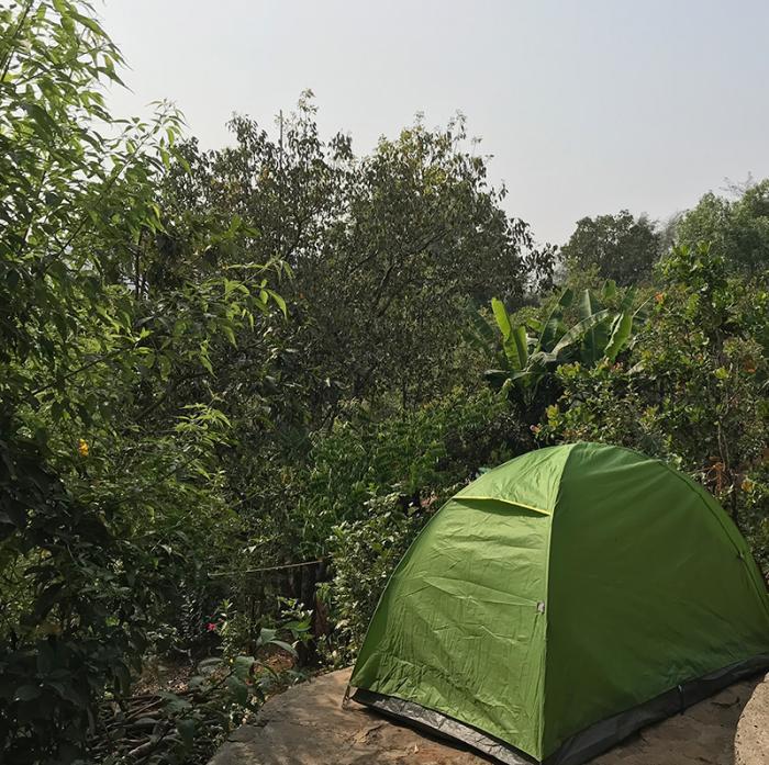 Lemontree-Mudhouse-tent