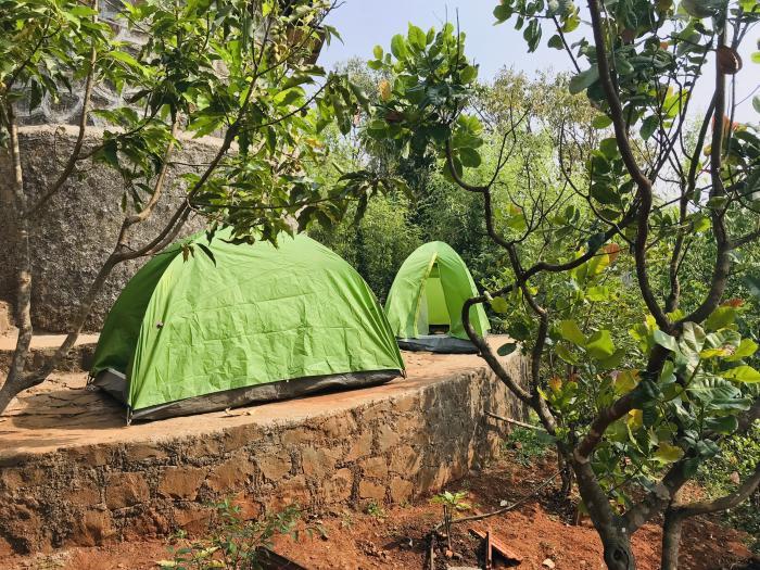 tents3 - 1