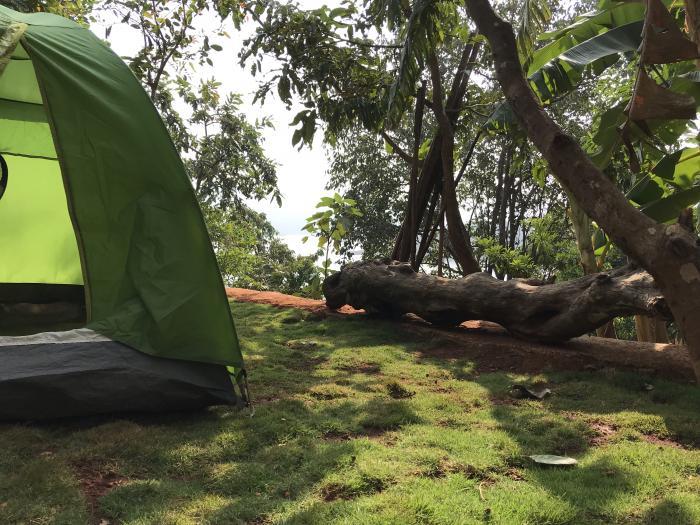 tents6 - 1